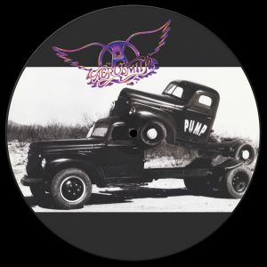 Aerosmith - Pump [New, Vinyl, Picture Disc, MP3 Download Code] ― The Vicious Squirrel